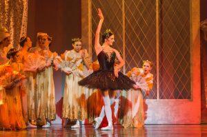 Swan Lake, Odile and the Princesses